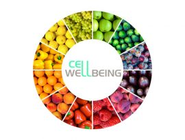 Cell Wellbeing Programme